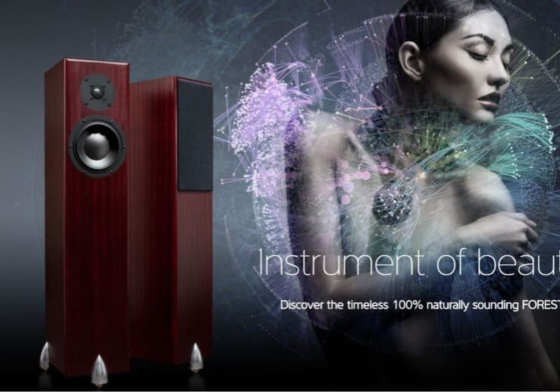 Totem High end Audio